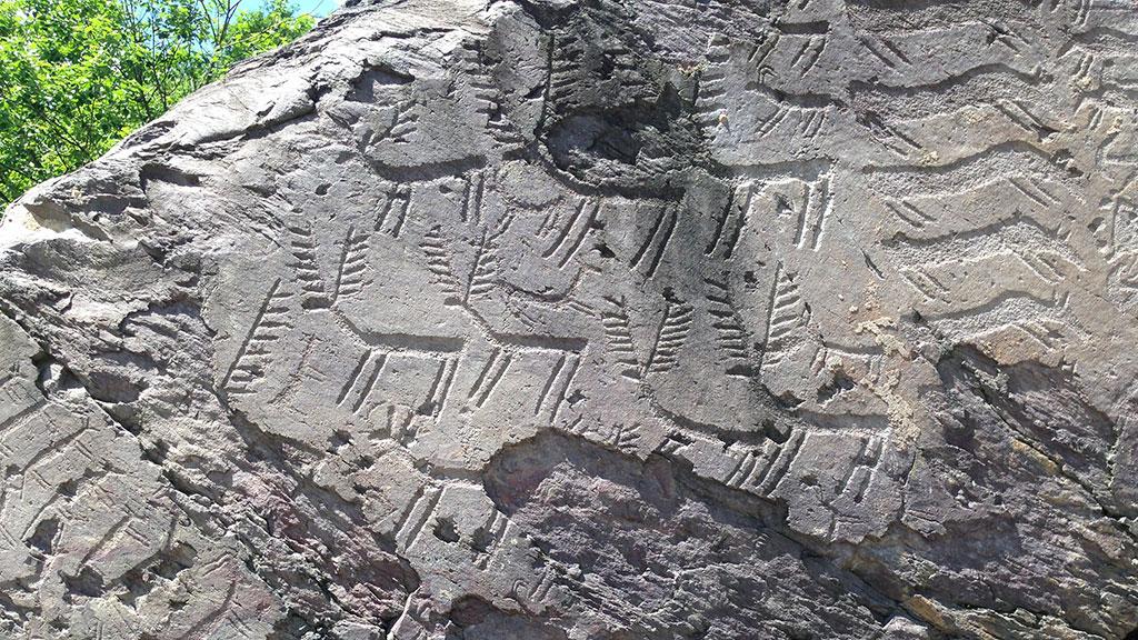 I parchi delle incisioni rupestri